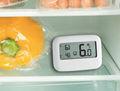 Koel Vries displaythermometer